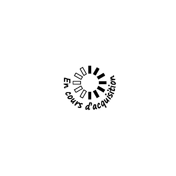 tampon n°137: En cours d'acquisition 30x30 mm