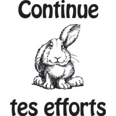 tampon n°84: Continue tes efforts 23x28mm