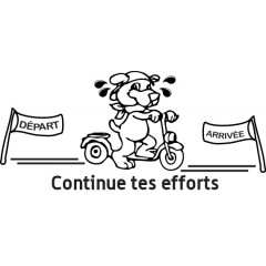 tampon n°110: Continue tes efforts 45x21 mm