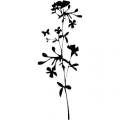 tampon Fleur des champs