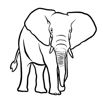 Tampon tatouage éphémère Éléphant
