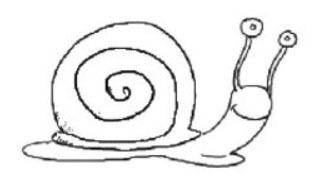 tampon Escargot