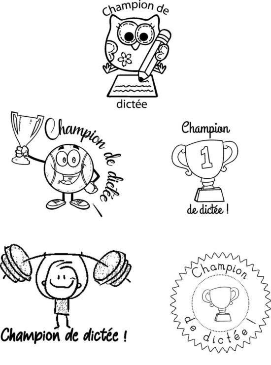 Pack 5 tampons évaluations Champion de dictée !