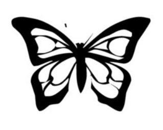 tampon Papillon n°2