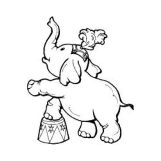 tampon Eléphant
