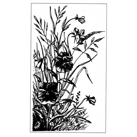 Tampon gravure ancienne : Fleur des champs