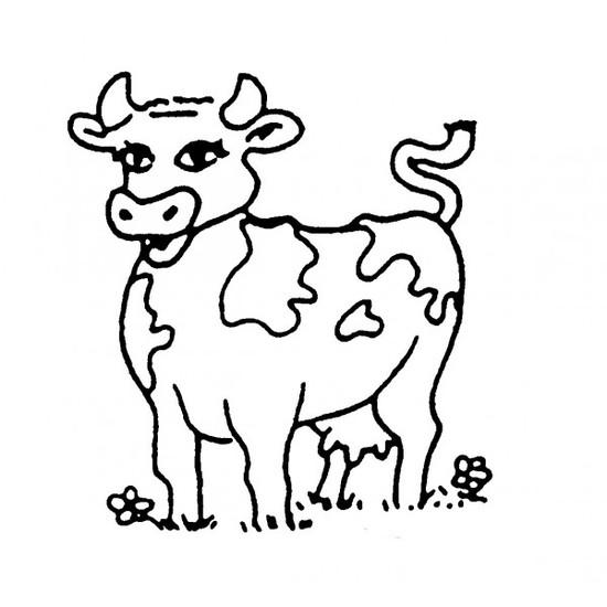 tampon Vache n°3