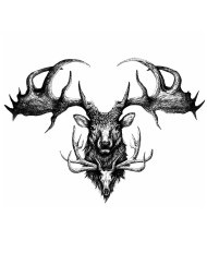 Tampon tatouage éphémère Cerf