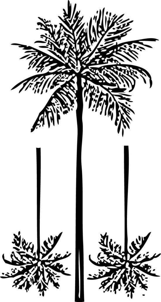 Tampons tatouages éphémères Palmiers n°2