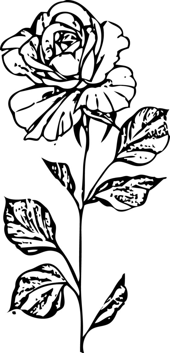 Tampon tatouage éphémère Rose